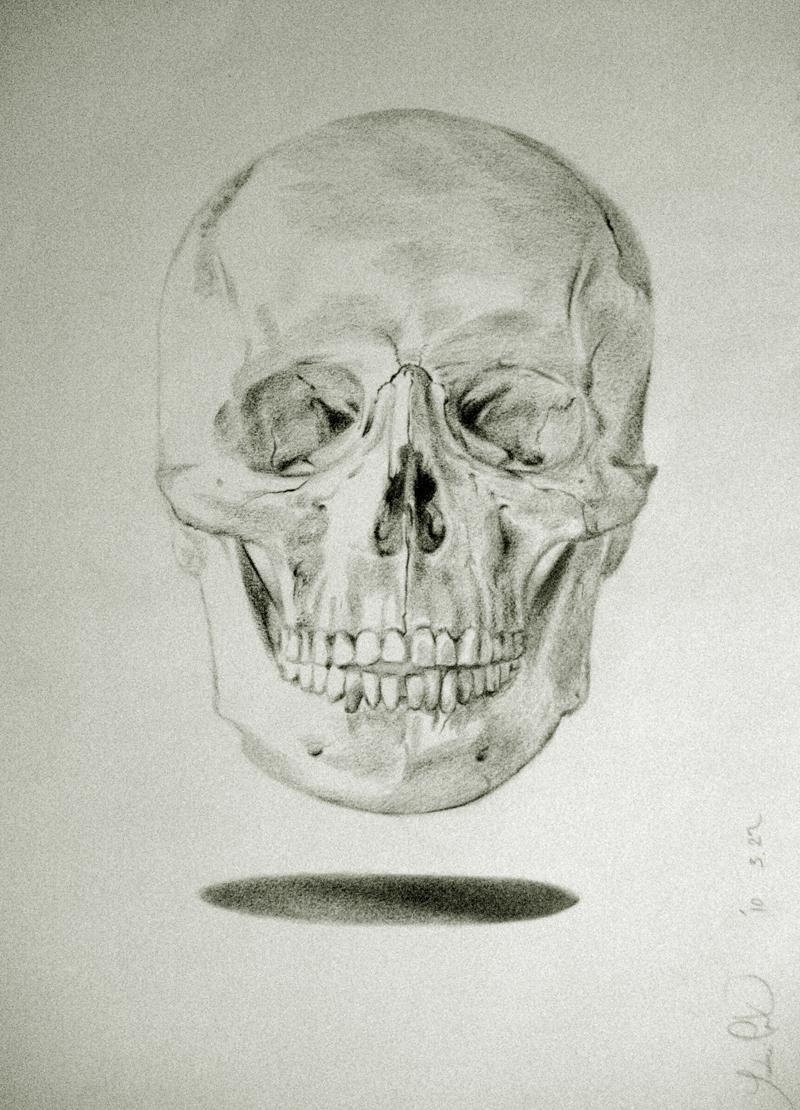 Hamlet's Skull by AvantGardeNabi on DeviantArt