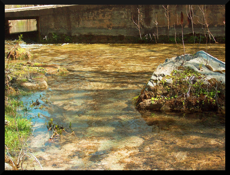 Shutter Island Stream German Kkiste