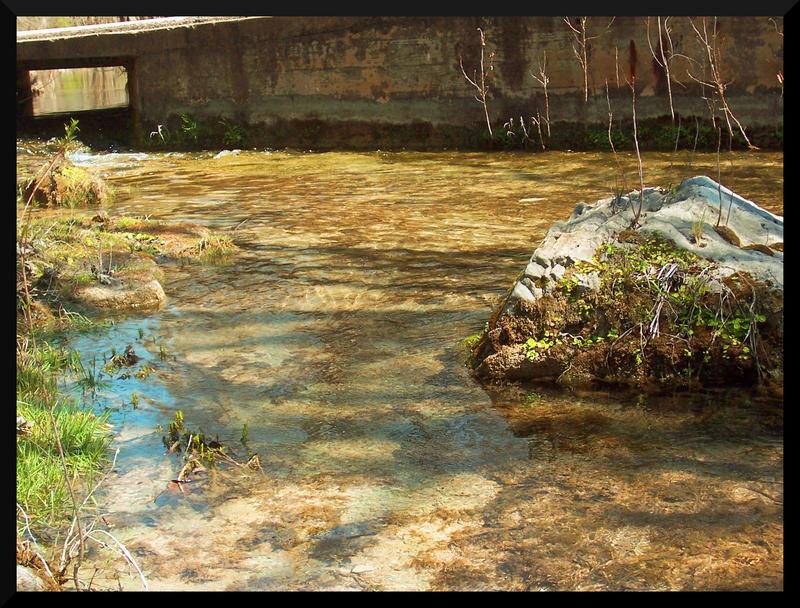 Shutter Island Stream Streamcloud