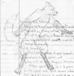 Anthropomorphism: Fox