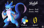 Shalyk [Commission] by FireEagle2015