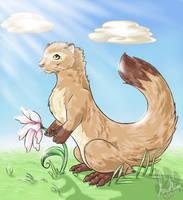 Denret.Spring.Contest by InuMimi