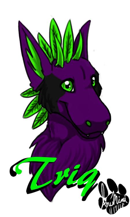 Triq by InuMimi