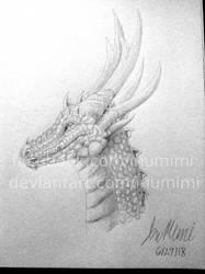 Dragony by InuMimi