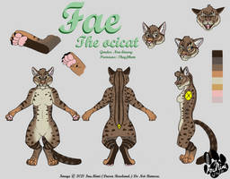 Fae Ref Sheet
