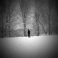 snow wanderer by lostknightkg