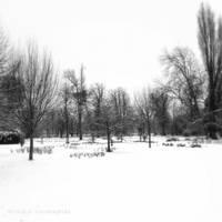 Snowlands by lostknightkg