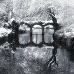 Silver gardens by lostknightkg