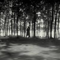 Forest wanderer by lostknightkg