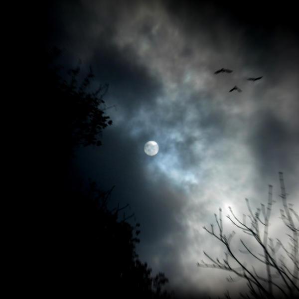 Winter moon by lostknightkg
