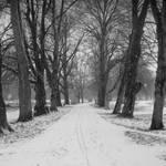 Snows by lostknightkg