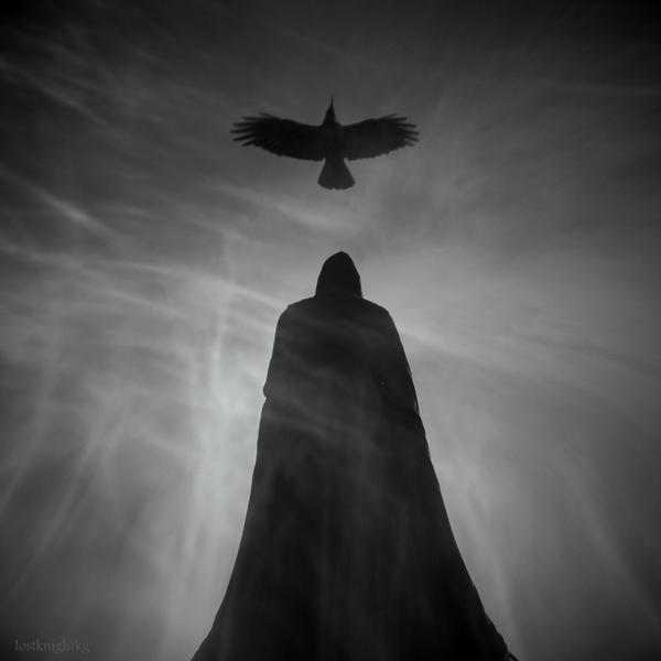 Raven King by lostknightkg