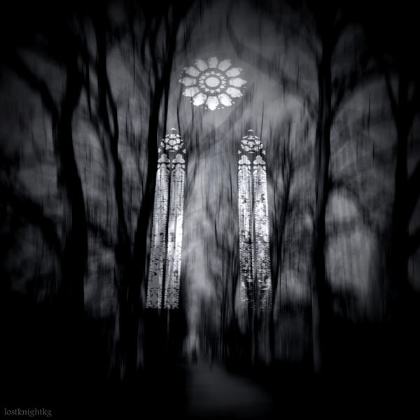 Forest Cathedral by lostknightkg