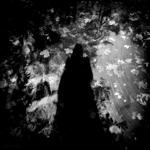 Autumn shadow by lostknightkg