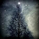 Season's Greetings by lostknightkg