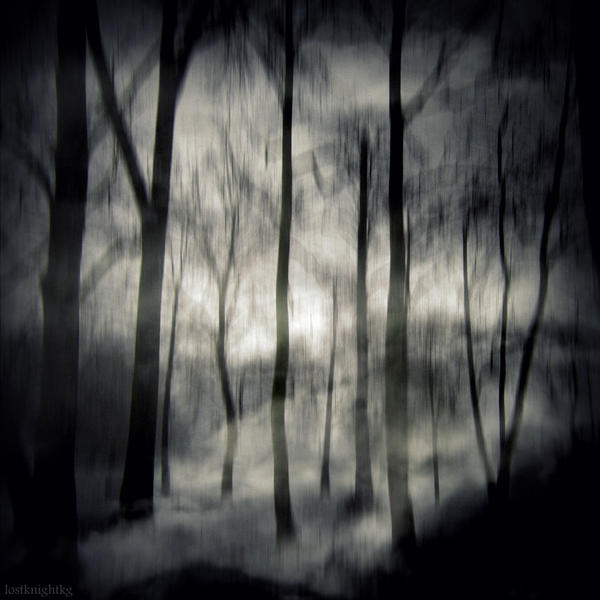 Haunted Forest by lostknightkg