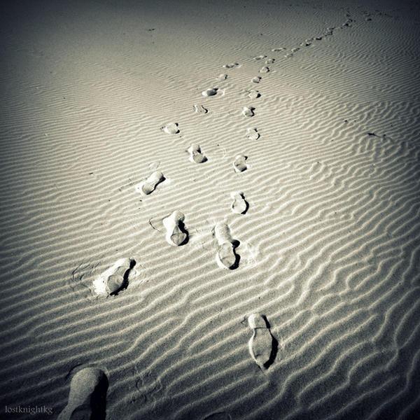 Dunes ID by lostknightkg