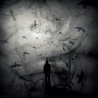 Raven Chaos