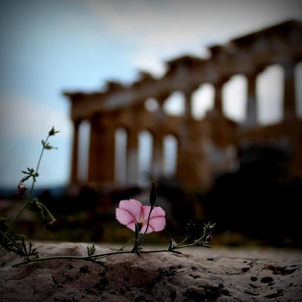 Athena by lostknightkg