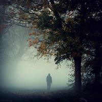 November Silence by lostknightkg