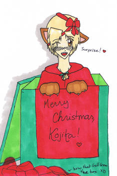 Christmas 2011: Kojika