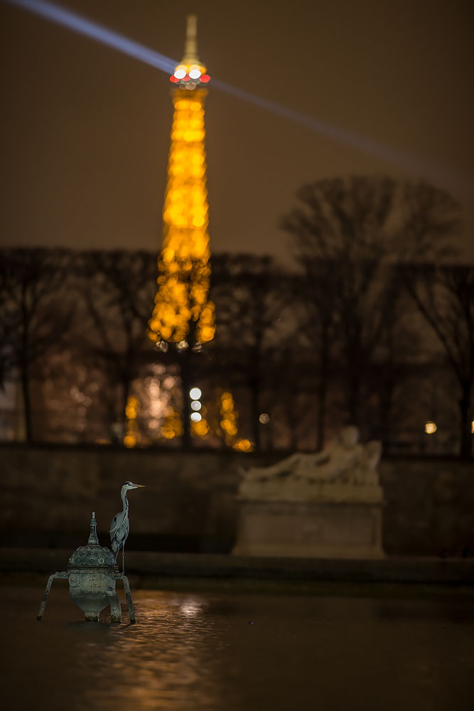 Les deux monuments de Paris by phalalcrocorax