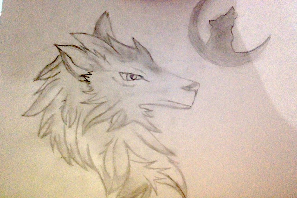 Moon  Wolf by tomkat25