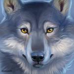 Wolf. Sai Sketch