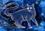 Grey cat Patronus