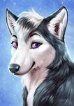Ikoe, the cute Husky girl