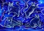 Cats Patronuses