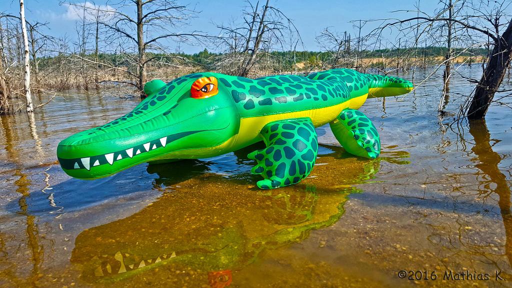 Inflatable Crocodile By FuchsRobinHood ...