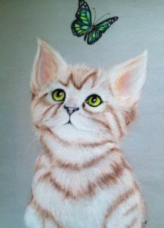 Kitten and butterfly by sophitera