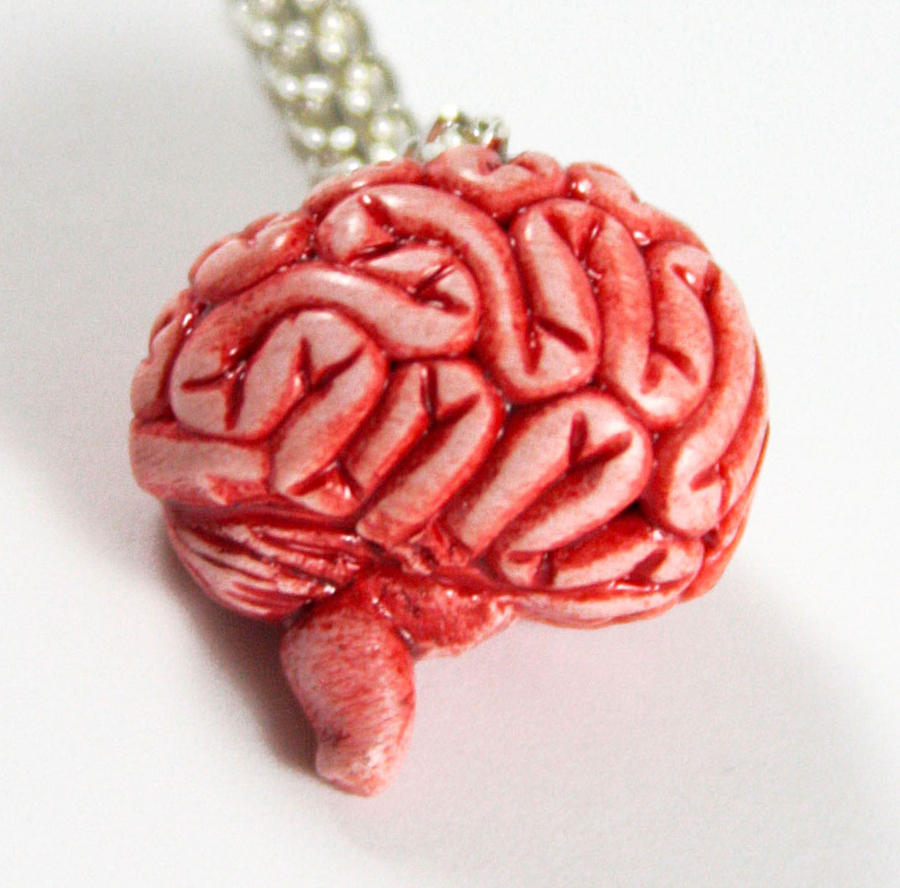 How to Make an Anatomically Correct Brain Cake