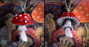 Wonderland  Mushroom