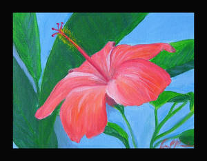 Paint Hibiscus