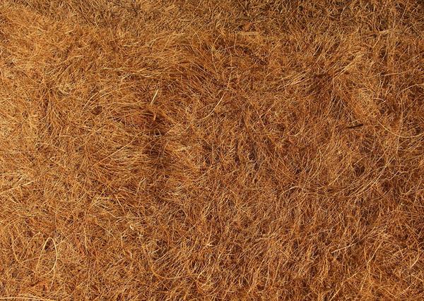 Hay Texture by lucrezetta