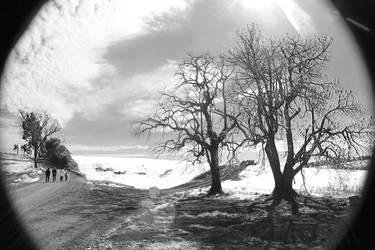 Silent Road by pedrokrum