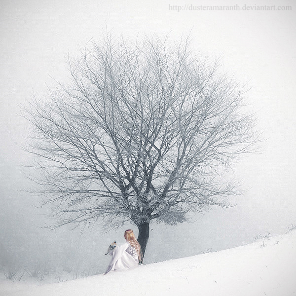 My Winter Storm by DusterAmaranth
