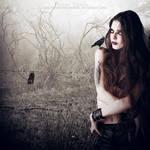 Nocturne by DusterAmaranth