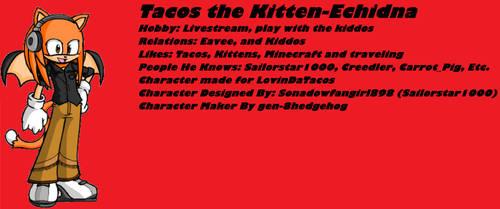 Tacos the Echidna-kitten