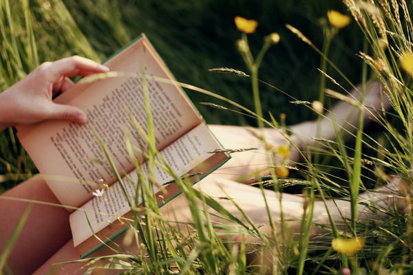 Buttercups and Books