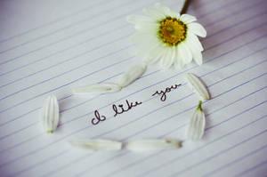 I Like You by pinkparis1233