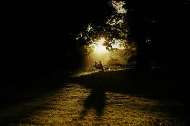 Let the Light Shine on Love