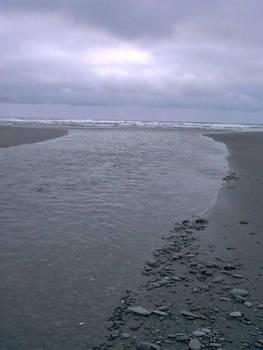 Kalaloch Beach in Washington