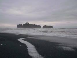 Island off Rialto - Forks WA