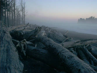 Rialto Beach Mist - Forks, WA by RC-ForksWA