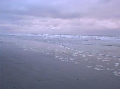 Kalaloch Beach