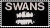Swans by TheBluestJay