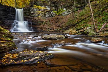 Autumn Color at Sheldon Reynolds Falls by ryangallagherart